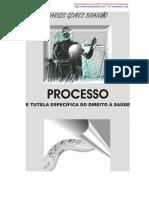 Processo e Tutela Especifica Do Direito a Saude
