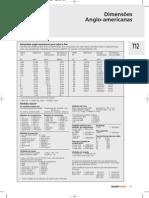 DIMENSOES_ANGLO_AMERICANAS.pdf