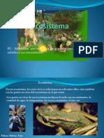 Ecosistema 4