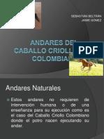 Andares Del Caballo Criollo Colombiano