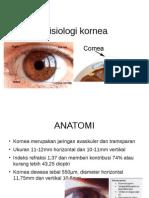 Fisiologi kornea.pptx