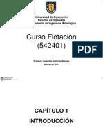 Capitulo_1-Introduccion