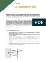 Manual de Lixiviacion de Oro