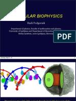 Molecular Biophysics
