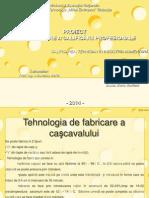Tehnologie de Fabricare a Cascavalului