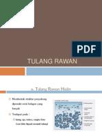 Tulang Rawan.pptx