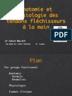 fléchisseurs.pdf