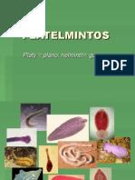 Teo Platel 2012