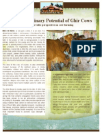 The Extraordinary Potential of a Ghir Cow