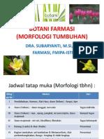 Botani Farmasi (Morfologi)-Revisi