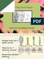 Embriologi Sistem Rangka