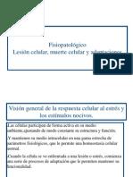 Fisiopatologia Lesion Celular