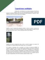 TECNICAS COMPOSICION Y FOTOGRAFIA.docx