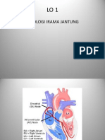Irama Jantung dan Fisiologi Jantung