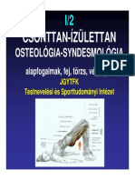 02 BSc Anatomia Csont Izulettan