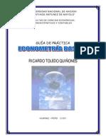 Guia Prac Econometria v2