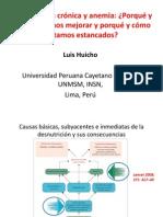 Presentacion Luis Huicho