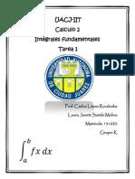 Tareas Completa de Calculo2
