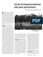 Article Milpa Chacsinkinpdf