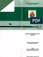 Dos Lecturas Criticas. Arqueología en Colombia (1996). Fondo de promoción de la cultura.