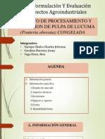 Proyecto de Procesamiento y Exportacion de Pulpa de Lucunma