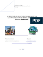 Proiect Disneyland Final