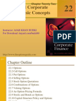 Ch22 Options and Corporate Finance Basic Concepts