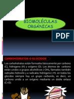 Carbohidratos, Lipidos y Proteinas