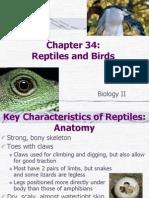35 Chapter 34 Bio II