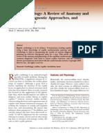 69-reptilecardiology