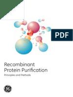 Purificacion de Proteinas Recombinantes