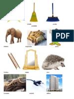Animales Con e