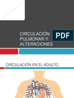 Circulación Pulmonar y Alteraciones