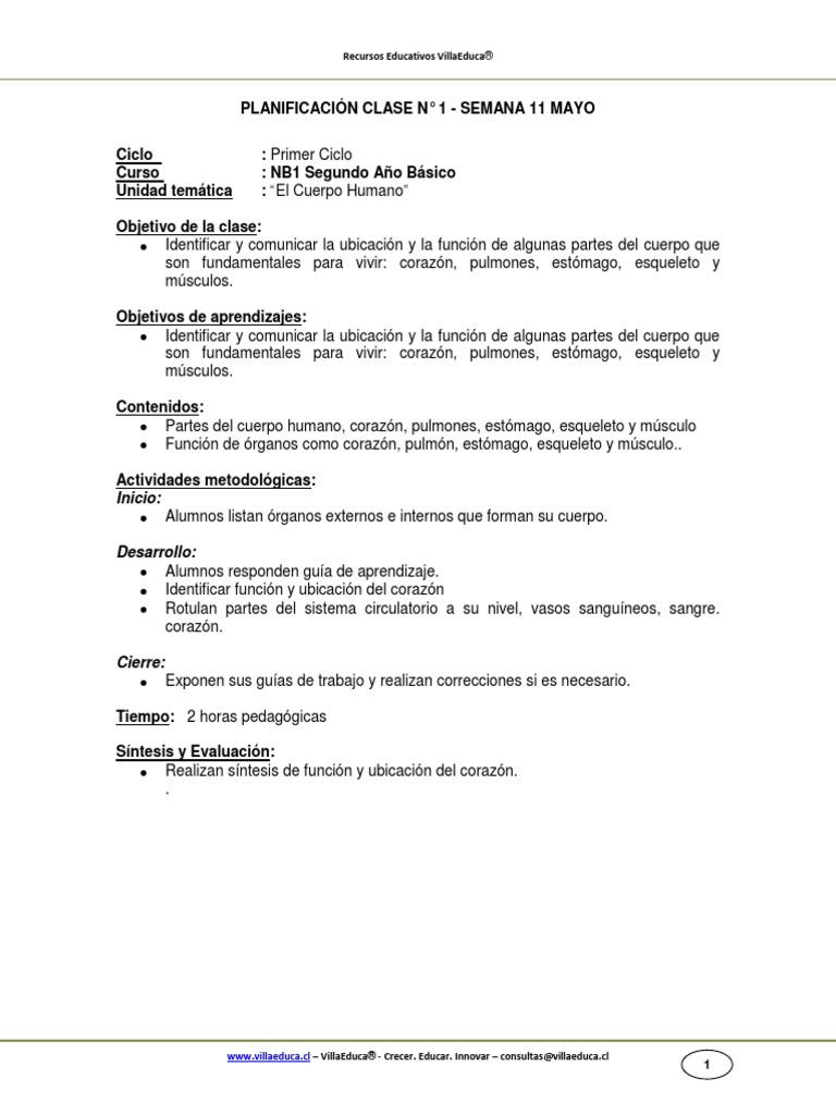 Guia Ciencias 2o Basico Semana 11 El Cuerpo Humano Mayo 2012