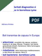 Hristea Borelioza Lyme