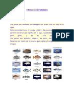 guia de ciencias naturales 2° peces y anfibios