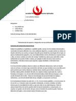 Informe CIFO