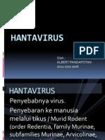 Hantavirus (Albert p)