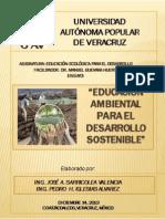 Ensayo Educacion Para El Desarrollo Sostenible - j. Sarricolea - p. Iglesias