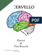 48-Il Cervello - Ricerca Di Tina Broccoli