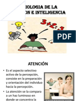 Semio-Atencion e Intelig