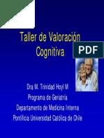 15 Taller Valoracion Cognitiva