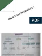 AGONISTAS ADRENÉRGICOS