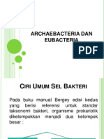 Archae Dan Eubacteria