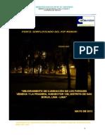 PIP Iluminacion Parque