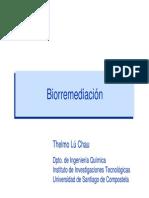 Prestige Biorremediacin