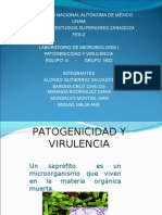 eq_9_patogenicidad_y_virulencia_microbiologia