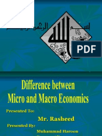 Differecne Between Micro and Macro Economics