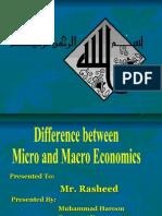 Differecne Between Micro and Macro Economics