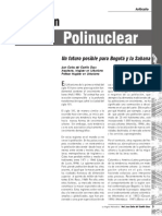 Dialnet-LaRegionPolinuclear-4008407